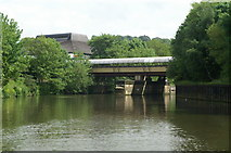 ST7464 : River Avon below Sainsbury's Bridge by Pierre Terre