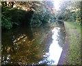 SJ6175 : Trent & Mersey Canal through Bradleymeadow Wood, Little Leigh by Jo Lxix