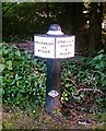 SJ6175 : Trent & Mersey Canal Milepost by Jo Lxix
