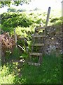 SE0619 : Ladder in place of ruined stile, Barkisland by Humphrey Bolton