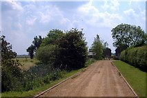 SJ6145 : Drive to Sheppenhall Hall, Newhall by Mike Harris