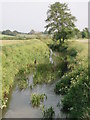 ST6896 : Little Avon River from Matford Bridge by Sharon Loxton