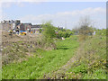 SE4003 : Derelict Dearne and Dove Canal at Wombwell by Martin Clark