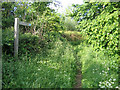 TL2148 : Entrance to bridleway, Sutton/Potton, Beds by Rodney Burton