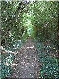 SP9504 : Footpath, Bellingdon by Rob Farrow