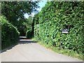 SP9704 : Lane to Pressmore Farm by Rob Farrow