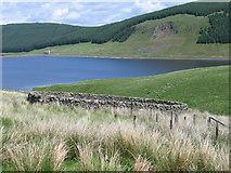 NT0819 : Sheepfold near Fruid Reservoir by Chris Wimbush