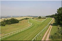SU1028 : Salisbury Racecourse by Peter Facey