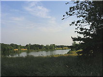 SP8443 : Fishing lakes - Little Linford by John Winfield