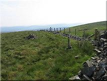 NS9109 : Southern Upland Way on Laght Hill by Chris Wimbush