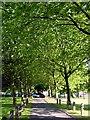 ST5876 : Ardagh Tennis Court by Linda Bailey