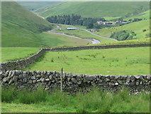 NS8017 : Enclosure on hillside below Peat Rig by Chris Wimbush