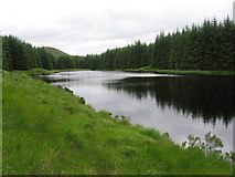 NX4492 : Loch Fannie with Craigfionn visible above the trees by Chris Wimbush