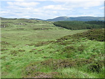 NX4595 : Rough moorland by Chris Wimbush