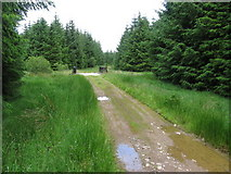 NX4790 : Forest track at bridge over Kirreoch Burn by Chris Wimbush