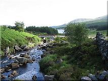 NX4892 : Gala Lane near the bridge at the head of Loch Doon by Chris Wimbush