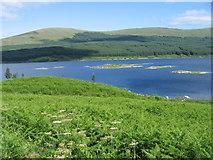 NX4894 : Across Loch Doon to Portmark by Chris Wimbush