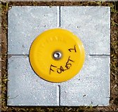 NN0308 : Survey marker by Patrick Mackie