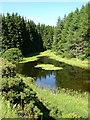 NY6889 : Pond in Kielder Forest by Iain Thompson