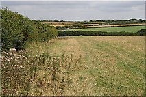 SW9072 : Mixed Agricultural Land by Tony Atkin