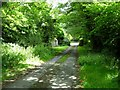 SM9431 : Lane to Newbridge by Stephen McKay