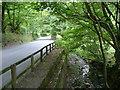 SJ9370 : Rossendale by Neil Lewin