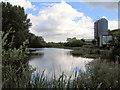 SJ5675 : Mill pond adjacent to Kingsley mill by Alan Godfree