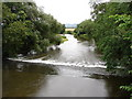 SJ2306 : River Severn Weir Near Welshpool by John Lucas