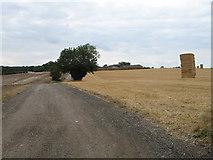 TL3121 : Track to Chapel Farm by Martin Addison