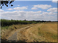 TL1536 : Farm track and farmland, Meppershall, Beds by Rodney Burton