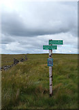 SD6719 : Signpost on Darwen Moor by michael ely