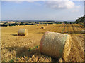 NT5330 : Harvest Bales by Walter Baxter