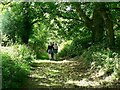 SW6031 : The path to Godolphin Hill by Rich Tea