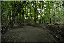 SS7797 : Path bend and stream in Mosshouse Wood by Cedwyn Davies