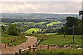 TQ0449 : North Downs Way at Newlands Corner by Richard Thomas