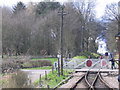 TQ8628 : Wittersham Road level crossing by Stephen Craven