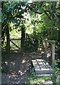 TQ1331 : Footbridge on footpath 2874 by Andy Potter