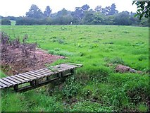 ST3198 : Footbridge, footpath and stile by Jennifer Luther Thomas