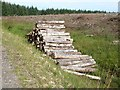 NY6475 : Timber stack, Spadeadam Forest by Oliver Dixon
