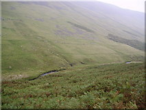 SD6683 : Barkin Beck by Michael Graham