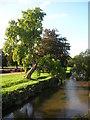 SJ8640 : River Trent - Trentham Gardens by DS Pugh