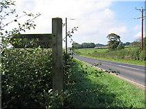 SE9048 : A614 by Stephen Horncastle