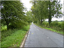 SP7553 : A lane off the A508 road north of Courteenhall by Phil Catterall