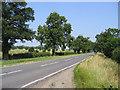 TF1127 : Main Road, Rippingale, Lincs by Rodney Burton