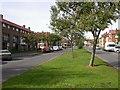 SP7362 : Park Drive, King's Heath by Kokai