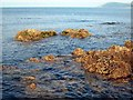 NX0783 : Rocky shore at Ballantrae by Oliver Dixon