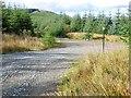 NR8993 : Track junction by Patrick Mackie