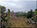 SJ5560 : View from Tiverton footpath 3 by Mike Harris