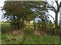 SE2997 : Farmland near Stanhowe by Dave Dunford