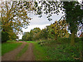 SE9958 : Green Lane across the A166 by Stephen Horncastle